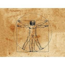 Anatomie palpatoire - Formation Massage Bien-Etre - Institut Lingdao