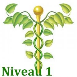 Bases de la naturo Niveau 1/3 - Formation Naturopathie - 123-formation-naturopathie.fr
