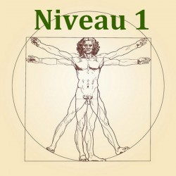 Anatomie et Physiologie - Niveau 1/3 - Formation Naturopathie - 123-formation-naturopathie.fr