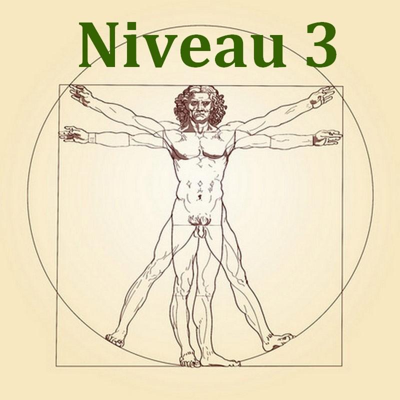 Anatomie et Physiologie Niveau 3/3 - Formation Naturopathie - 123-formation-naturopathie.fr