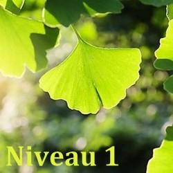 Phytothérapie Niveau 1/2 - Formation Naturopathie - 123-formation-naturopathie.fr
